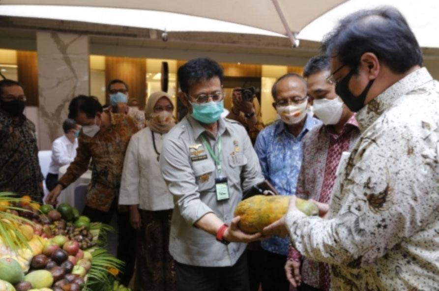 Airlangga meninjau buah-buhan yang dipamerkan di Launching Gelar Buah Nusantara (GBN) ke 5 di, Senin (10/8/2020).